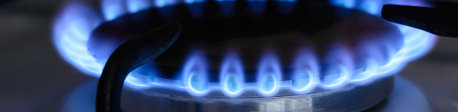 Blue flame around hob. Ofgem economists Academic Panel