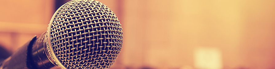 Microphone (left)