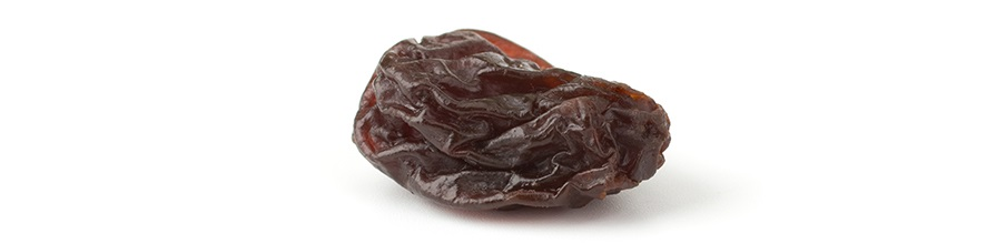 A lone raisin on a white background