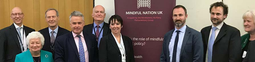 trudi Edginton speaking at mindfulness APPG hearing