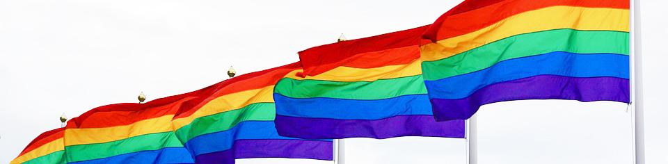 LGBTflahero