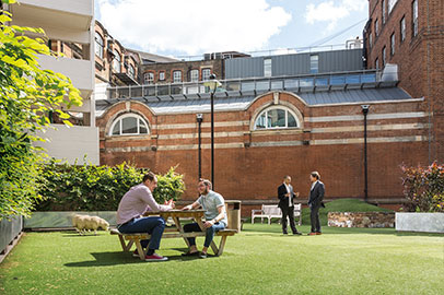 City University London's Drysdale Garden