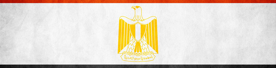 Egyptian flag hero image 2