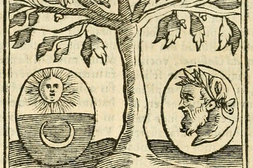 Image of drawn tree with a sun and moon on one side, and a man's face on the other side of the tree.