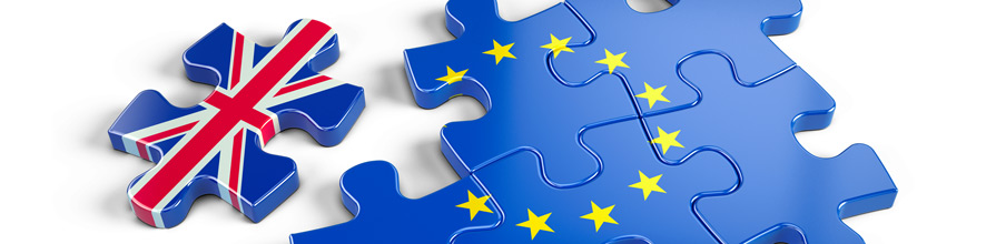 EU and UK jigsaw puzzle