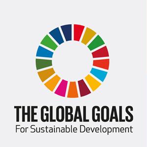 UN Global Goals logo -