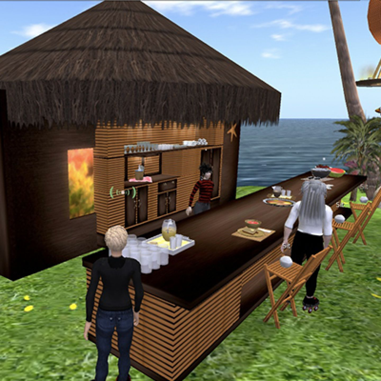 Screenshot of eva park an online virtual world