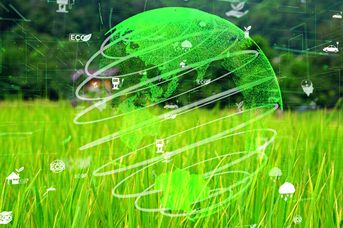 Grassy field with green globe hologram suspended in the air above