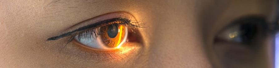 Eye with light shining on it. Optometry grant, David Crabb
