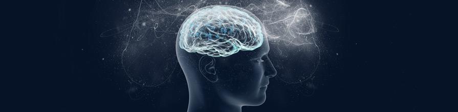 Human brain concept image