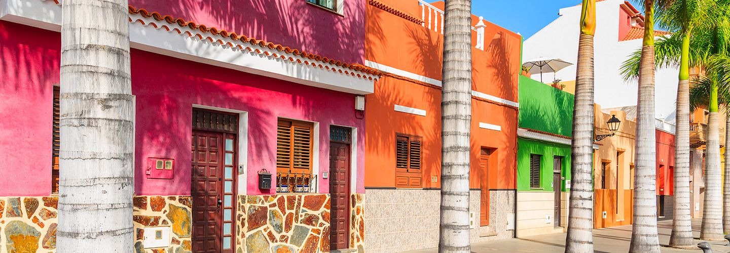 Colourful houses and palm trees in Puerto de la Cruz town