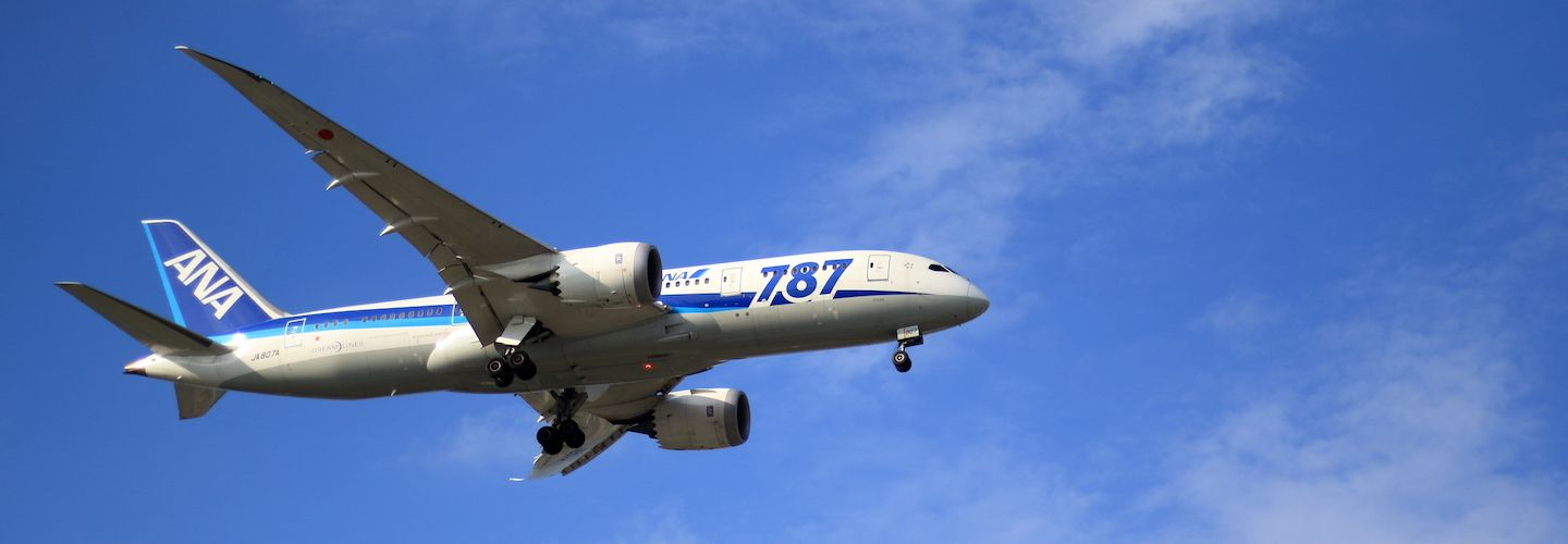 Boeing 787 airplane in the sky
