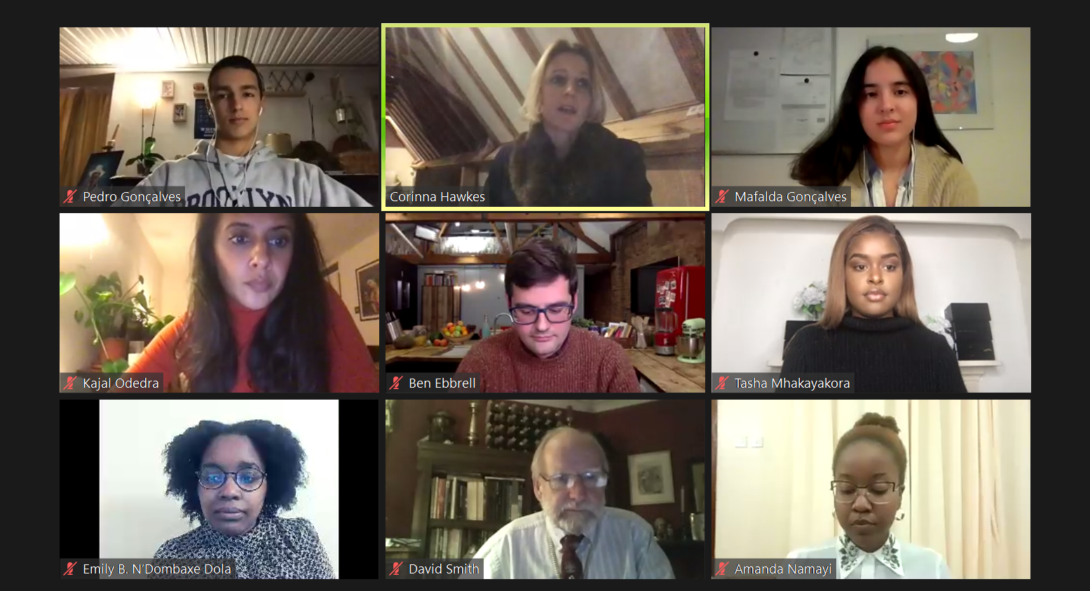 Screenshot of City Food Symposium 2020 panellists and chair on Zoom