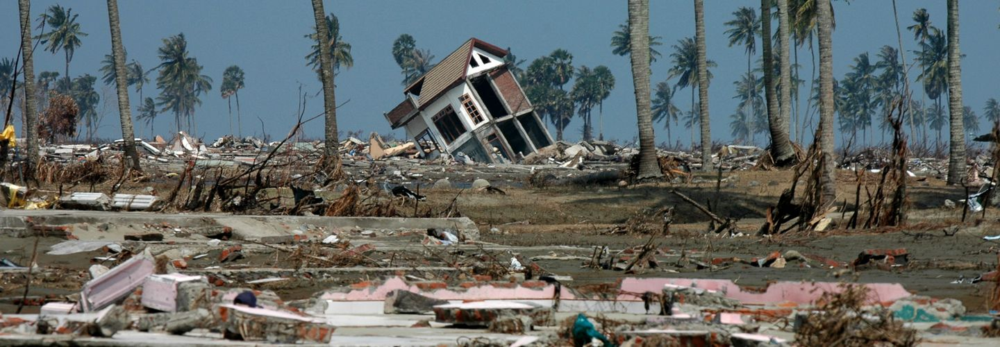 A semi-destroyed house tilts precariously in an empty space littered with rubble and windswept palm trees, against a murky blue sky.