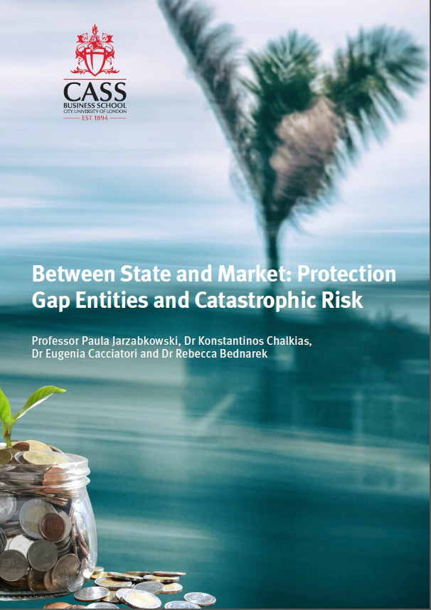 Between State and Market: Protection Gap Entities and Catastrophic Risk report pdf