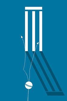 Mind Games Cricket wicket