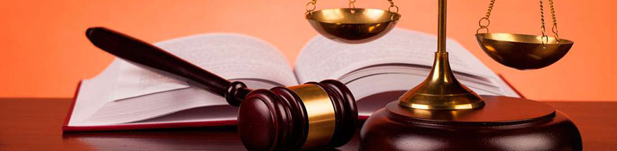 A gavel, open book and scales of justice