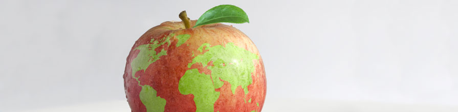 Apple with world map pattern on skin