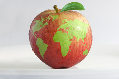Apple with world image on it