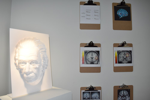 A mask of Einstein and brain scans at a visual illusion and schizophrenia exhibit at Somerset House